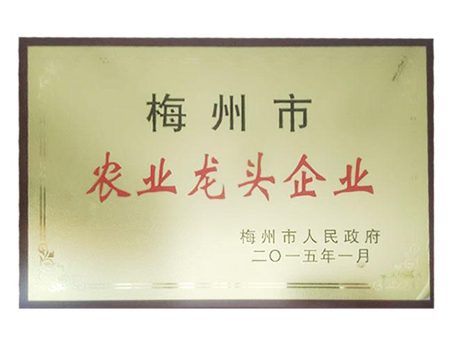 梅州市农业龙头企业